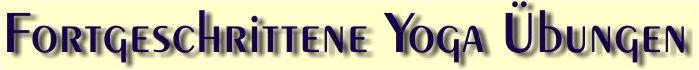Banner-Vert-2.jpg - 13,91 kB